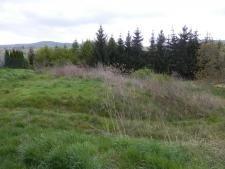 Prodej stavebního pozemku 849 m2 - Buchlovice
